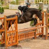 Junior Hunter Champions Named at Great Lakes Equestrian Festival