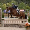 Smith Takes WCHR Challenge Honors in Respective Divisions at The Capital Challenge Horse Show